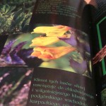 katalogi Lublin foldery broszury